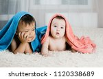 brother and sister lie with... | Shutterstock . vector #1120338689