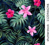 seamless hand drawn tropical... | Shutterstock .eps vector #1120466246
