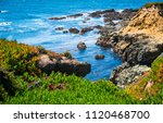 spring time along pacific coast ... | Shutterstock . vector #1120468700