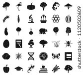 fauna environment icons set.... | Shutterstock . vector #1120502609