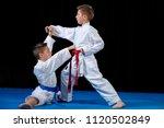two boys training karate kata... | Shutterstock . vector #1120502849