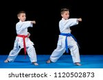 two boys training karate kata... | Shutterstock . vector #1120502873
