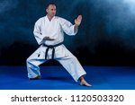 white karate fighter isolated... | Shutterstock . vector #1120503320