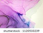 beautiful natural luxury....   Shutterstock . vector #1120533239