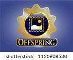 golden badge with picture icon ...   Shutterstock .eps vector #1120608530