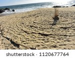 Circle Labyrinth Laid Out In...