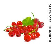 fresh  nutritious and tasty red ... | Shutterstock .eps vector #1120761650