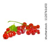 fresh  nutritious and tasty red ... | Shutterstock .eps vector #1120761653