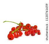 fresh  nutritious and tasty red ... | Shutterstock .eps vector #1120761659