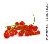 fresh  nutritious and tasty red ... | Shutterstock .eps vector #1120761680