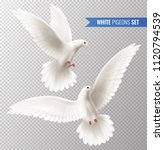 White Dove Transparent Set Wit...