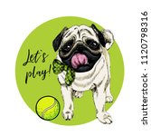 vector portrait of pug dog with ... | Shutterstock .eps vector #1120798316
