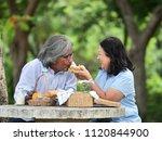 happy senior couple picnicking... | Shutterstock . vector #1120844900