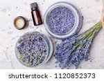 lavender body care products.... | Shutterstock . vector #1120852373