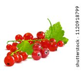 fresh  nutritious and tasty red ... | Shutterstock .eps vector #1120918799