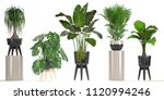 3d digital render of plant... | Shutterstock . vector #1120994246