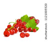 fresh  nutritious and tasty red ... | Shutterstock .eps vector #1121005520