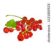 fresh  nutritious and tasty red ... | Shutterstock .eps vector #1121005523