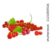 fresh  nutritious and tasty red ... | Shutterstock .eps vector #1121005526