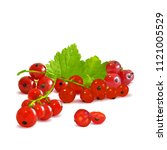 fresh  nutritious and tasty red ... | Shutterstock .eps vector #1121005529
