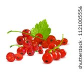 fresh  nutritious and tasty red ... | Shutterstock .eps vector #1121005556