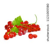 fresh  nutritious and tasty red ... | Shutterstock .eps vector #1121005580