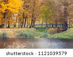autumn landscape with a pond in ... | Shutterstock . vector #1121039579