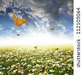 Field Of Daisies With...