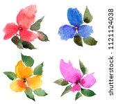 watercolor flowers set. drawing ... | Shutterstock . vector #1121124038