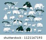 illustration vector of wild... | Shutterstock .eps vector #1121167193