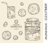collection of kombucha ... | Shutterstock .eps vector #1121178809