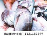 bird dorado fish on ice... | Shutterstock . vector #1121181899