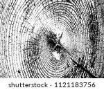 grunge texture   abstract stock ... | Shutterstock .eps vector #1121183756