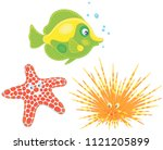long spine sea urchin  a... | Shutterstock .eps vector #1121205899