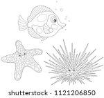 long spine sea urchin  a... | Shutterstock .eps vector #1121206850