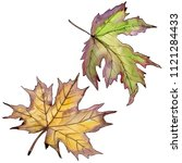 maple leaves in a watercolor... | Shutterstock . vector #1121284433