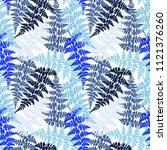 fern frond herbs  tropical... | Shutterstock .eps vector #1121376260