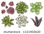 hand drawn wild tropical house... | Shutterstock .eps vector #1121403620