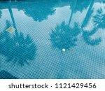 The Swimming Pool Has Shadow O...