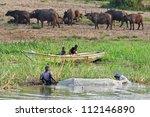 mburo  uganda   june 13 ... | Shutterstock . vector #112146890