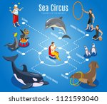 sea circus flowchart with... | Shutterstock .eps vector #1121593040