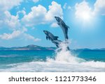 Group of dolphins jumping on...