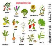 best foods for the immune... | Shutterstock .eps vector #1121784743