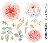 handpainted watercolor flowers... | Shutterstock . vector #1121788718