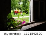 Looking Through A Barn Window...