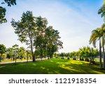green grass field with palm...   Shutterstock . vector #1121918354