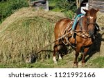 Horse Drawn By Hay
