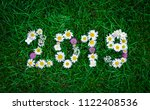 new year 2019 made of garden flowers on the grass - stock photo