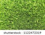 pine or coniferous tree close...   Shutterstock . vector #1122472319