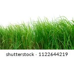 green grass isolated on white... | Shutterstock . vector #1122644219